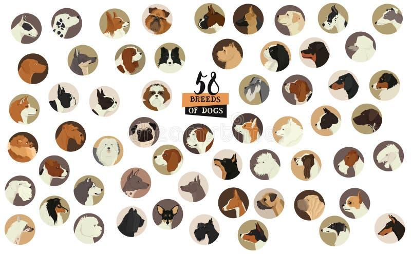 58 avel av hundkapplöpning isolerad objektrundaram stock illustrationer
