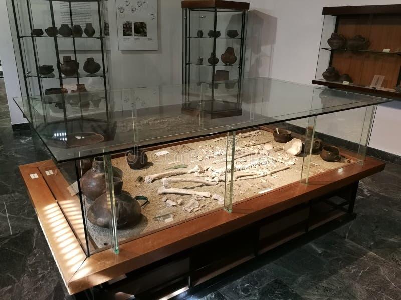 Avellino - quadro de mensagens de esqueletos fotografia de stock royalty free