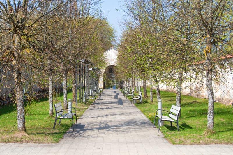 Avenida com árvores e bancos foto de stock