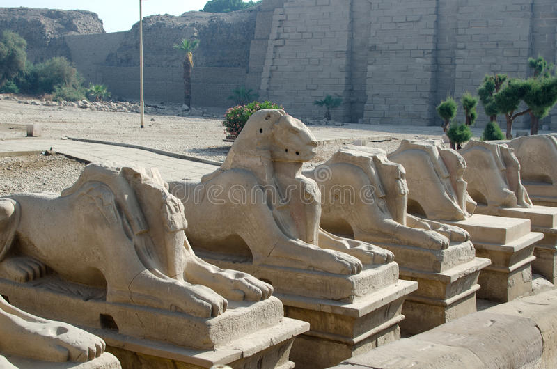 Avenida das esfinges nos arredores de Amun-re (complexo do templo de Karnak, Luxor, Egito) fotografia de stock royalty free