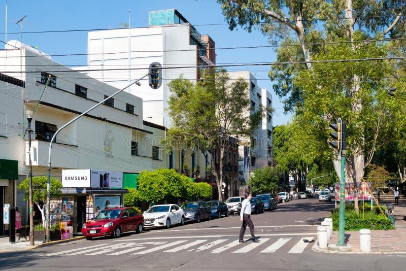 Avenida de Alvaro Obregon en la vecindad de moda de Roma Norte en Ciudad de México imagen de archivo