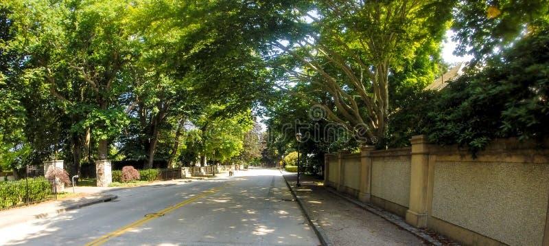 Avenida de Bellevue, Newport, RI fotografía de archivo libre de regalías