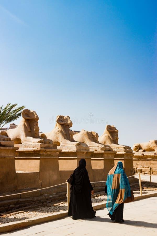 Avenida de esfinges en Luxor, Egipto imagen de archivo