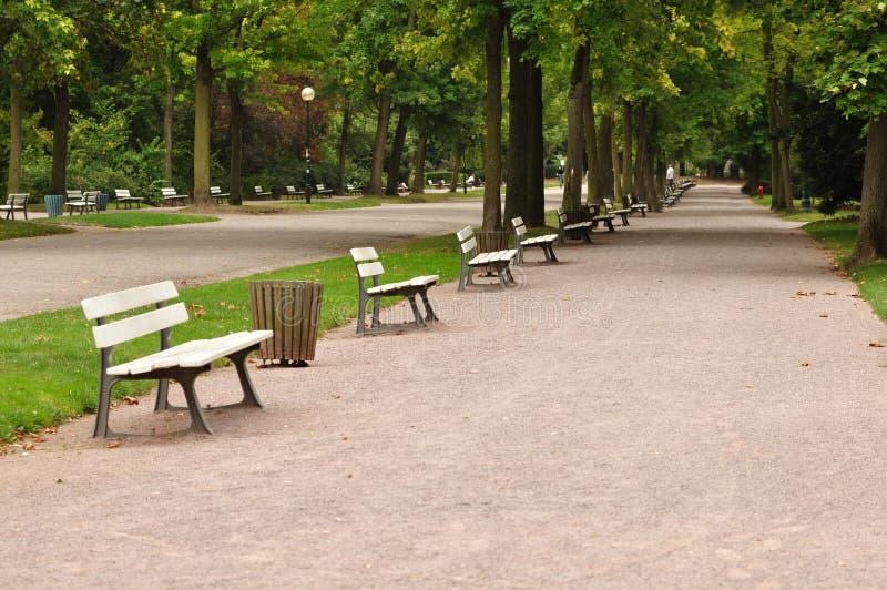 Avenida de parque verde imagens de stock