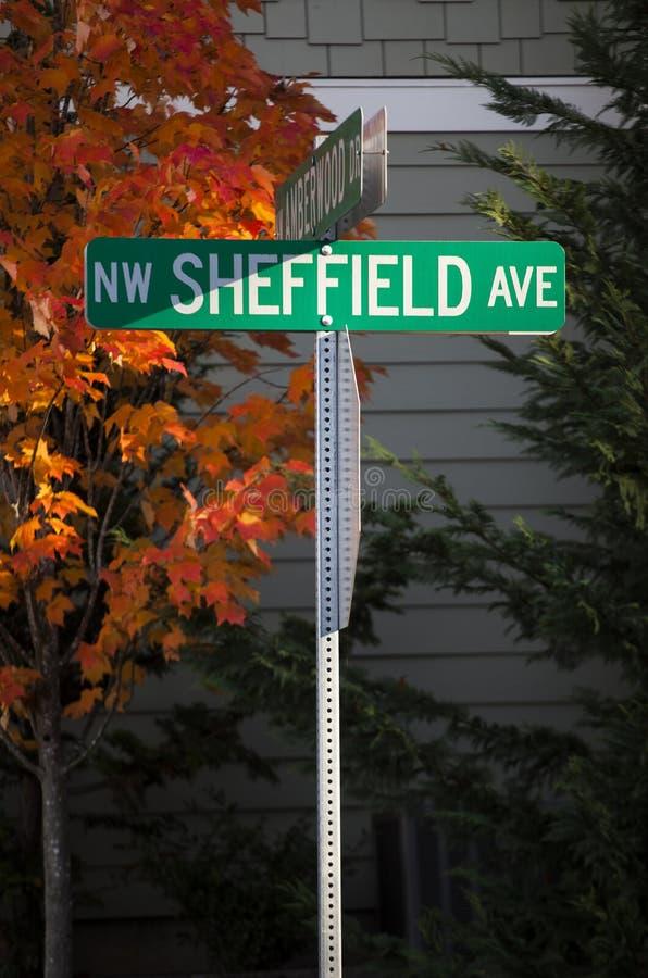 Avenida do nanowatt Sheffield fotografia de stock royalty free