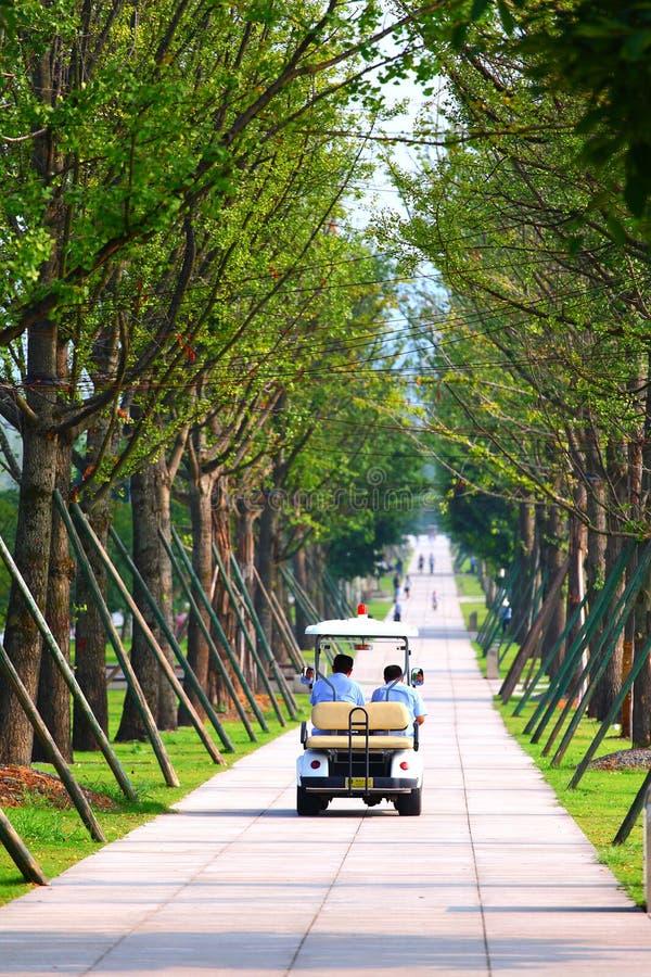 Avenida do verão imagem de stock