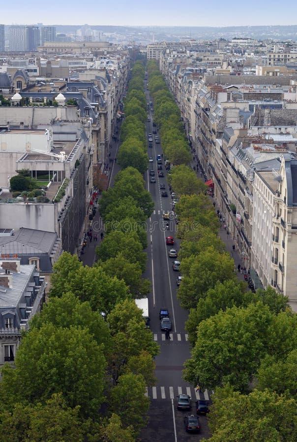 Avenida parisiense fotografia de stock