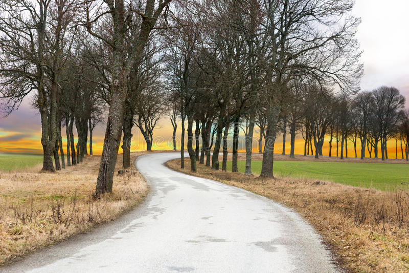 Avenida rural imagem de stock