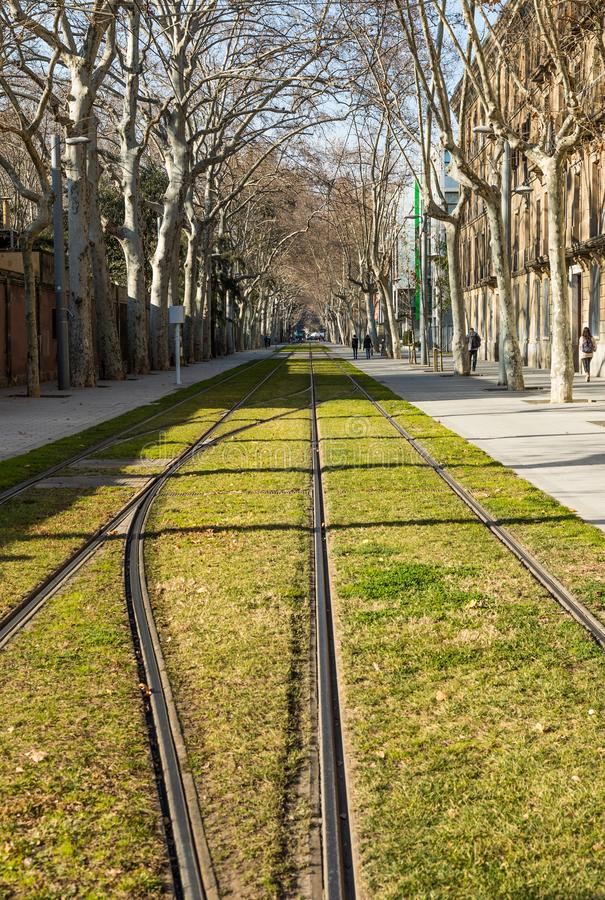 avenida Urbano Barcelona Vista Bonde fotografia de stock