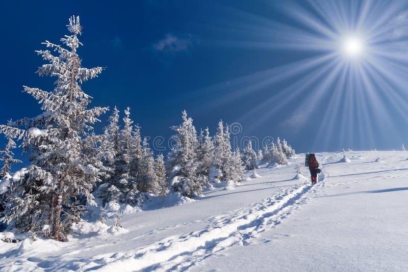Aventura del invierno foto de archivo