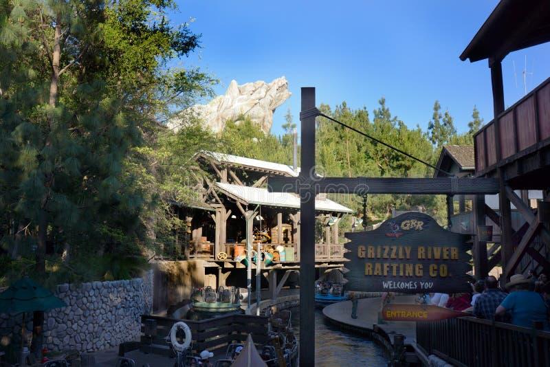 Aventura el transportar en balsa de río del grisáceo California fotografía de archivo libre de regalías