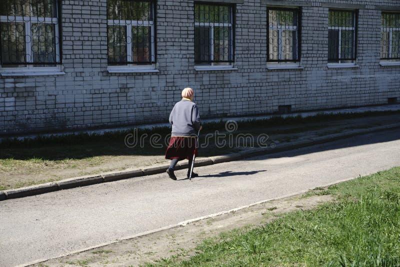 Aventura nórdica del ejercicio que camina que camina el concepto - primer de la abuela de la mujer foto de archivo