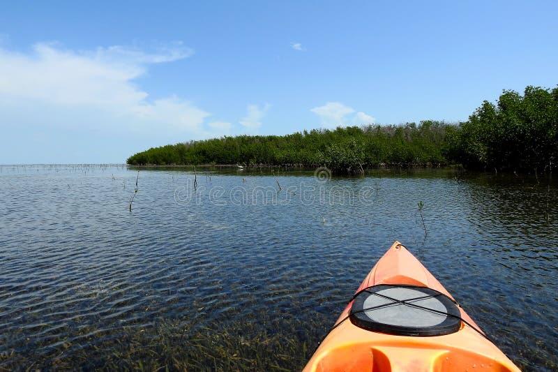 Aventuras da água traseira nas chaves de Florida fotografia de stock