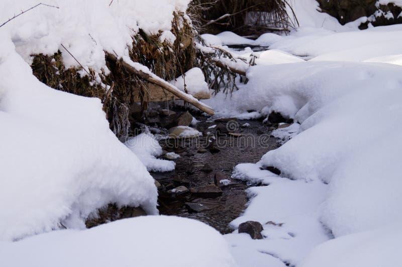 Aventures d'hiver Crique dans la neige carpathiens l'ukraine photo stock