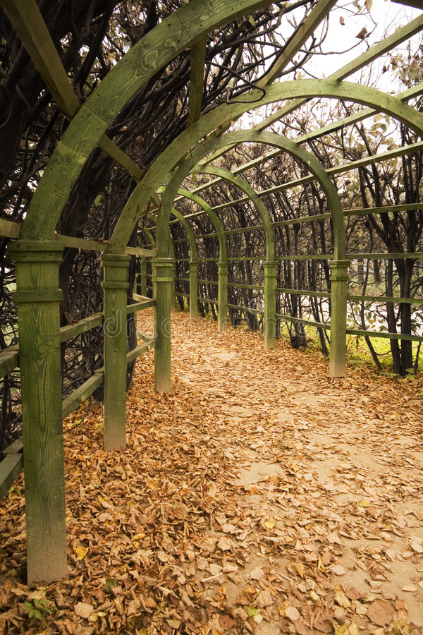 Download Avenue In A Garden In The Autumn. Stock Image - Image: 1411457