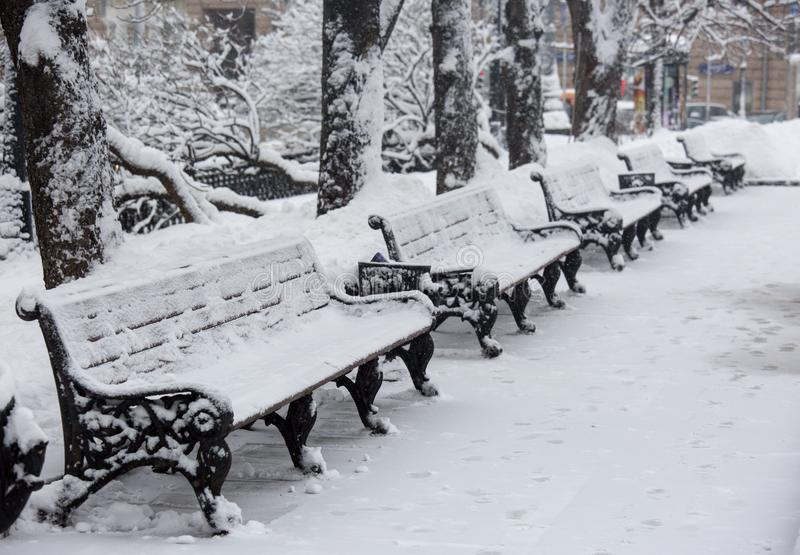 Avenue with a row of benches during strong wind and snowstorm at winter in Moscow, Russia. Scenic view of a snowy city. Street. Moscow snowfall background stock images