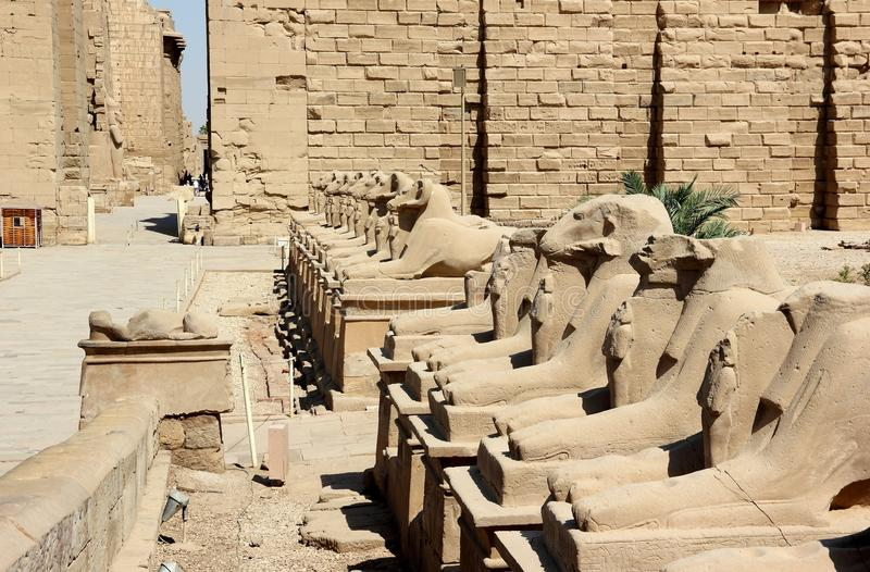 Download The Avenue Of The Sphinxes. Stock Image - Image: 26596945