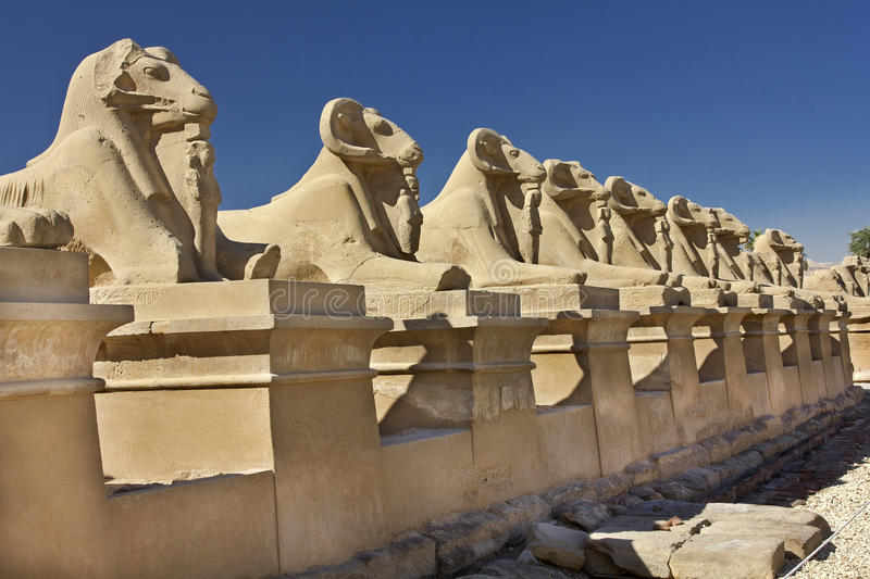 Avenue of sphinxes with the body of a lion and the head of sheep stock photos