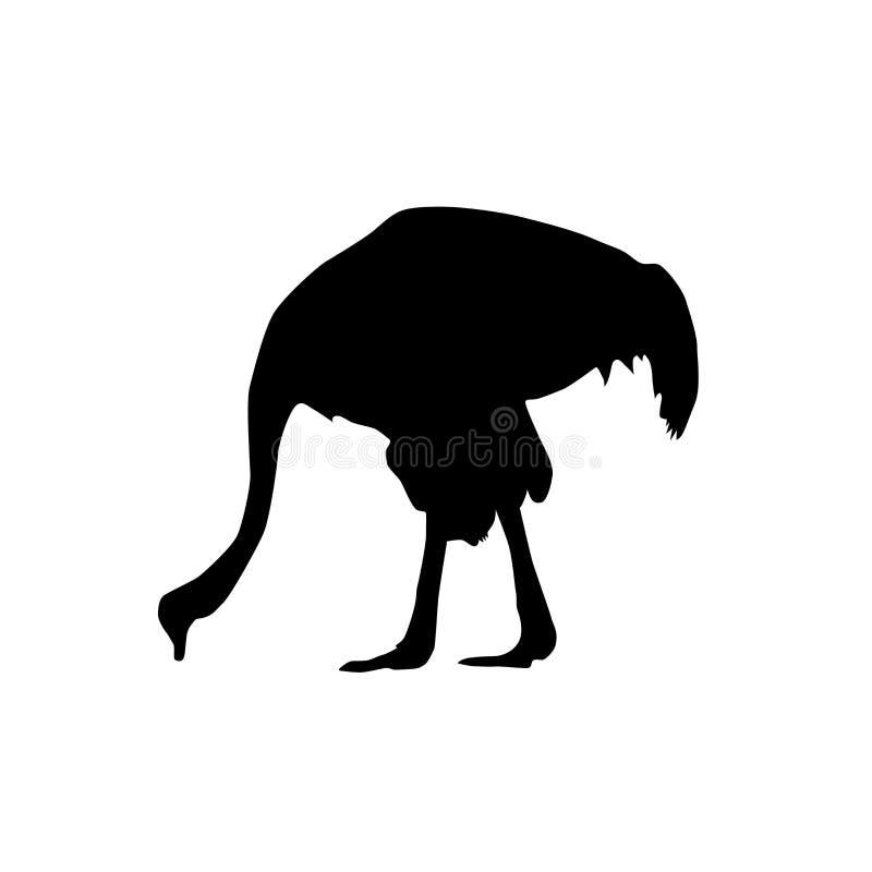 Avestruz da silhueta do preto do perfil imagens de stock royalty free