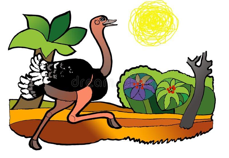 Avestruz que compete, livro de coloração fotos de stock