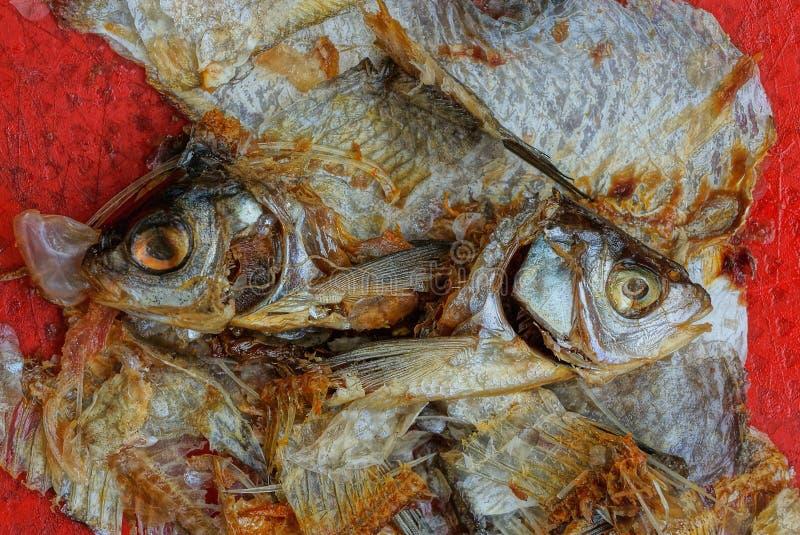 Avfall från en hög av stycken av fisken från ben och huvud royaltyfria foton