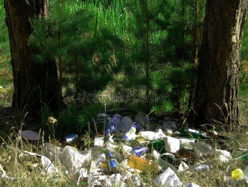 Avfall i den miljö- föroreningen för skog royaltyfri foto