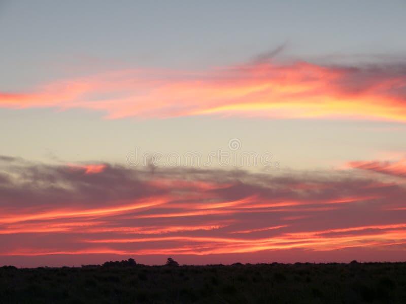 Avfyra i himlen, solnedgång i fältet royaltyfria foton