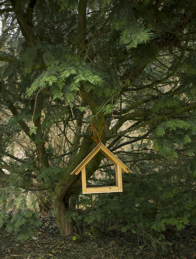 Aviário de madeira na árvore na floresta imagens de stock royalty free