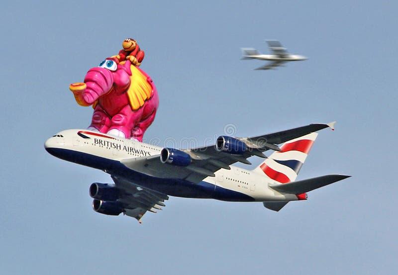 Avião de jato enorme do feriado do safari do elefante foto de stock