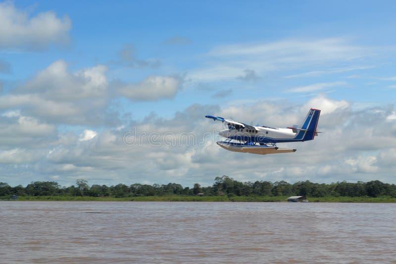 Avião nas florestas foto de stock royalty free