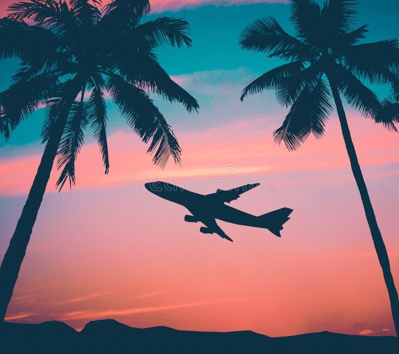 Avión de pasajeros retro con las palmeras foto de archivo libre de regalías