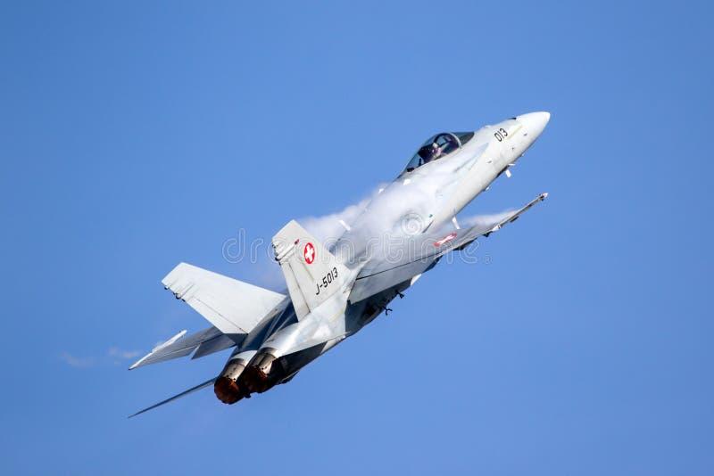 Avión del avión de combate del avispón de McDonnell Douglas F/A-18 foto de archivo libre de regalías