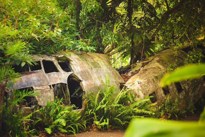 Avión estrellado en la selva tropical imagen de archivo libre de regalías