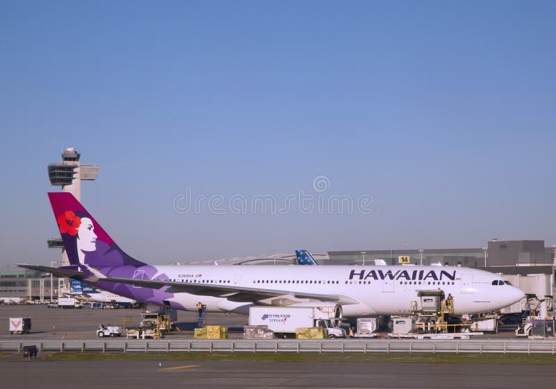 Aviões de Hawaiian Airlines Airbus A330 na porta em John F Kennedy International Airport imagem de stock royalty free