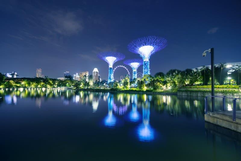 Aviador de la arboleda y de Singapur de Supertrees imagen de archivo libre de regalías