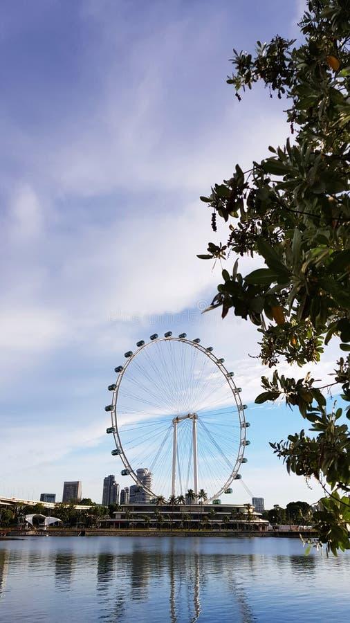 Aviador Ferris Wheel de Singapura imagem de stock