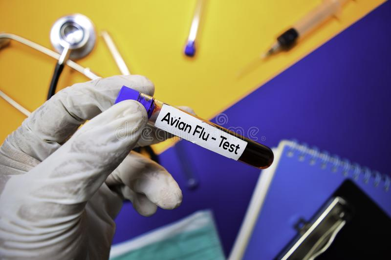 Avian Flu- Test with blood sample. Top view isolated on color background. Healthcare/Medical concept royalty free stock photos