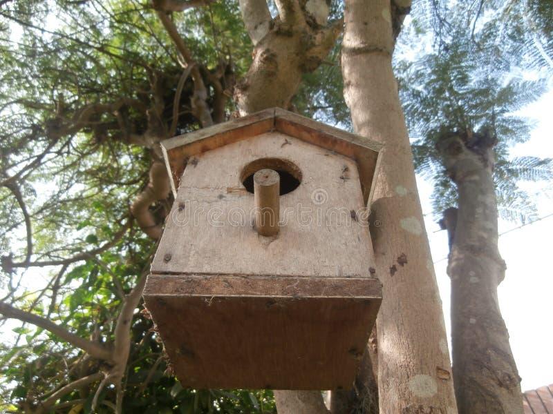 Aviario in albero fotografia stock libera da diritti