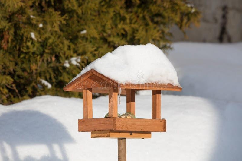 Aviario semplice in giardino di inverno fotografie stock libere da diritti