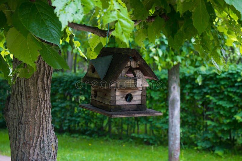 Aviario senza uccelli fotografia stock libera da diritti