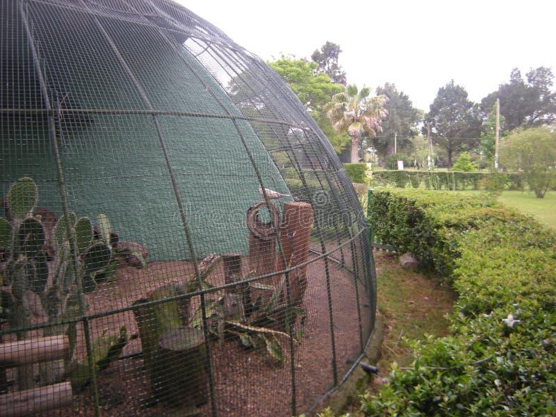 Aviarium i en zoo eller att parkera utomhus- arkivbild