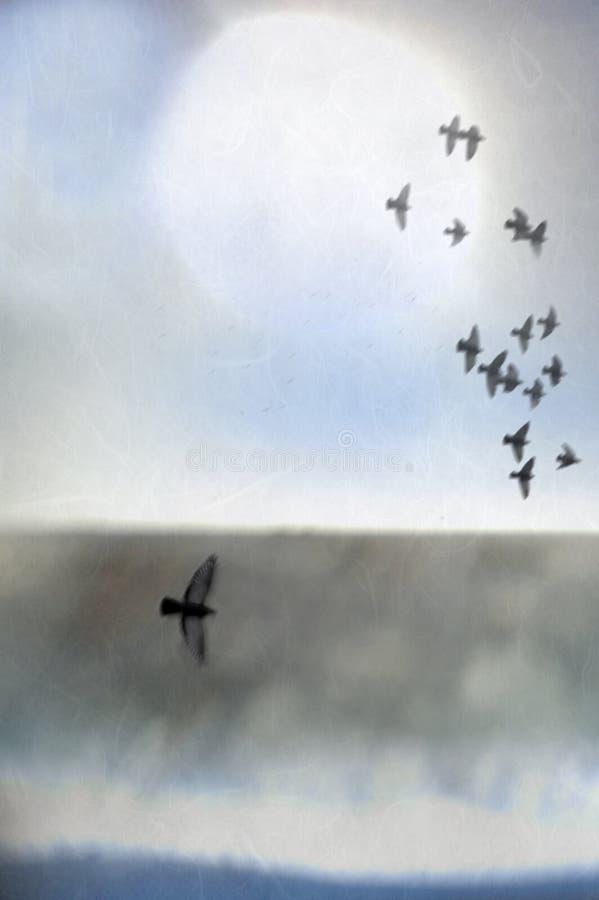Aviary stockfoto
