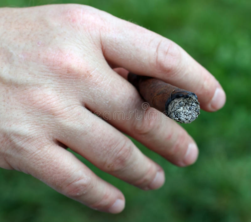 Avid smoker's hand while holding the cigar. Between his fingers stock photos