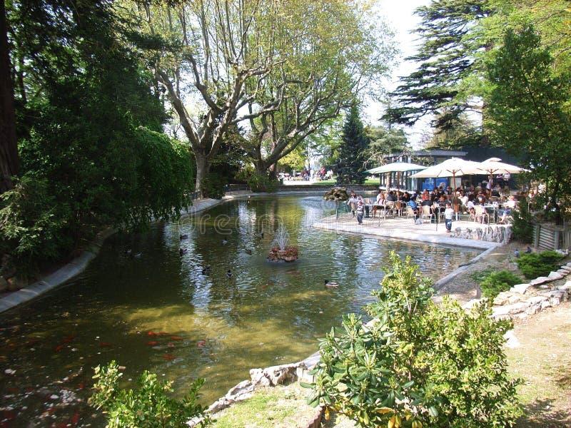 Avignon - lagoa no DES Doms de Rocher imagens de stock royalty free