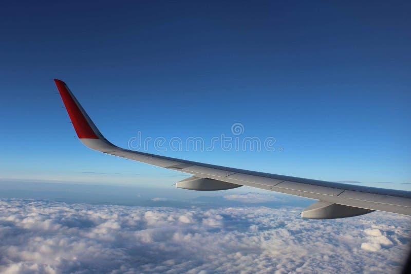 Avion d'aile photographie stock