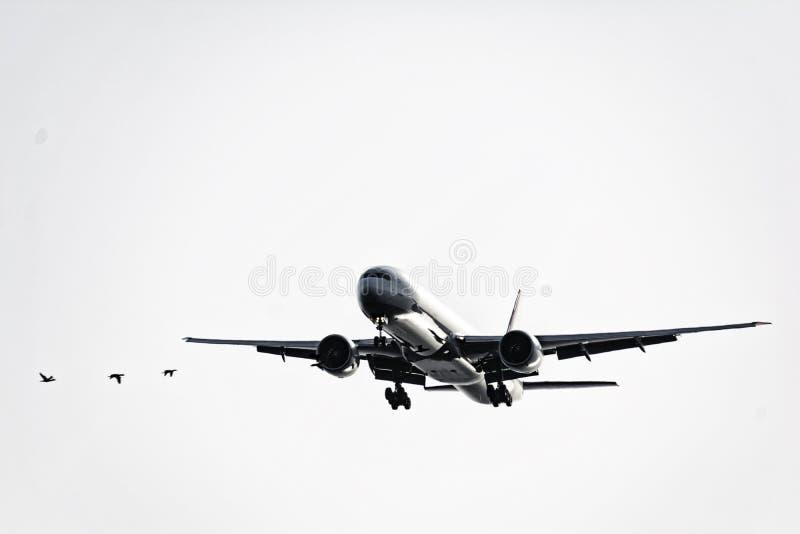 Avion de passager passe-bas sur le ciel images libres de droits