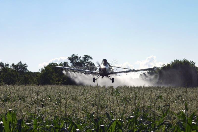 Aviones de la polvoreda de la cosecha en campo de maíz fotos de archivo libres de regalías