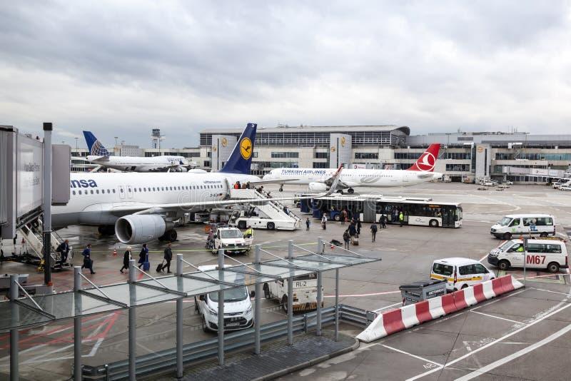 Avions de Star Alliance à l'aéroport de Francfort images stock