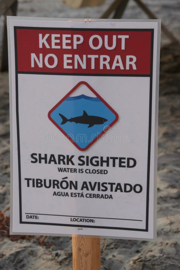Aviso do sinal sobre a observação do tubarão ao longo da Costa do Pacífico imagem de stock
