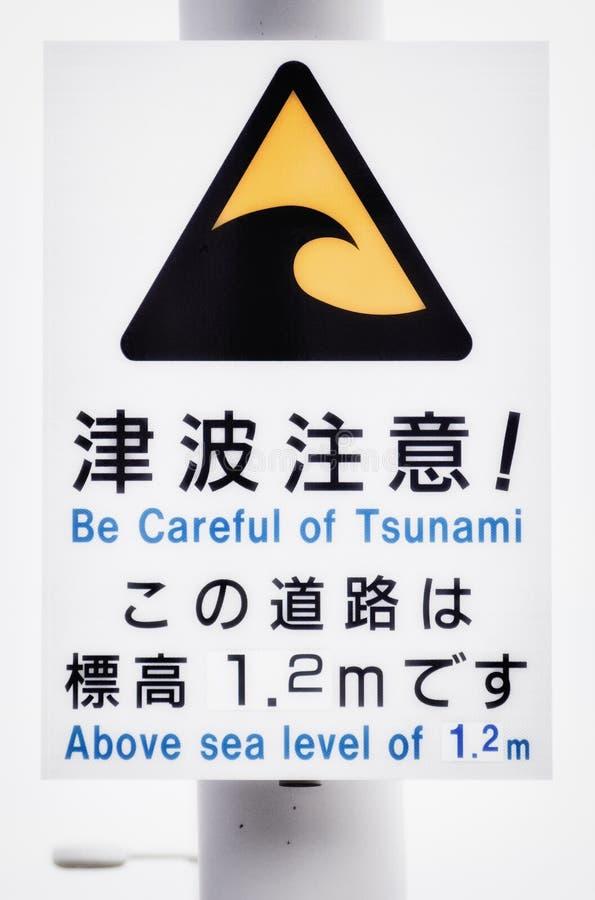 Aviso do tsunami imagens de stock